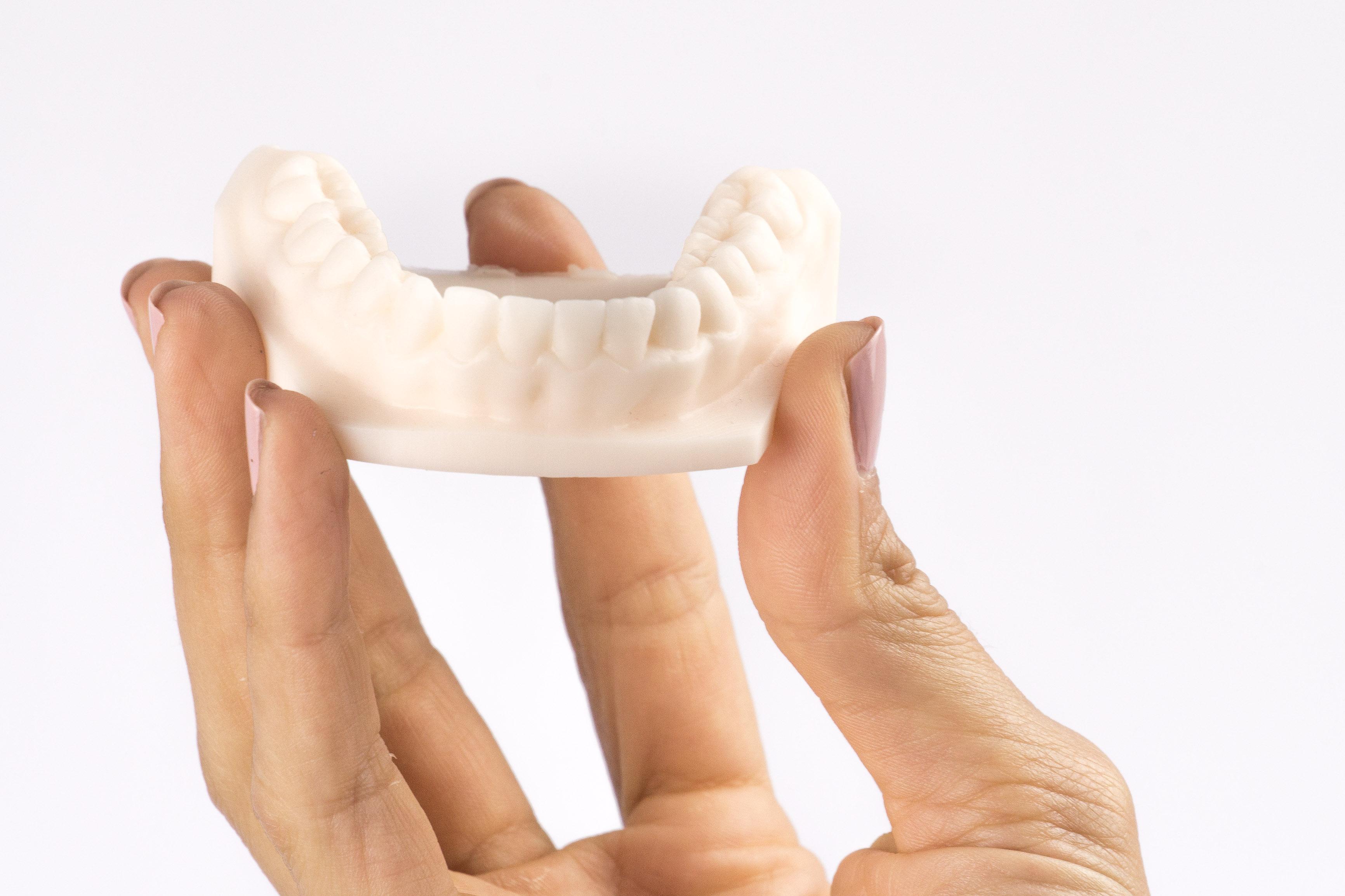 Modell_Dental