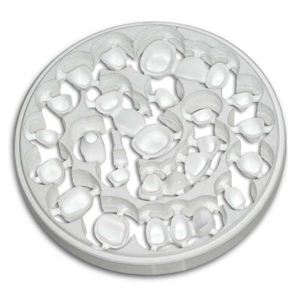 Zirkon BioStar mit Schulter Ø 98.5 mm, weiß